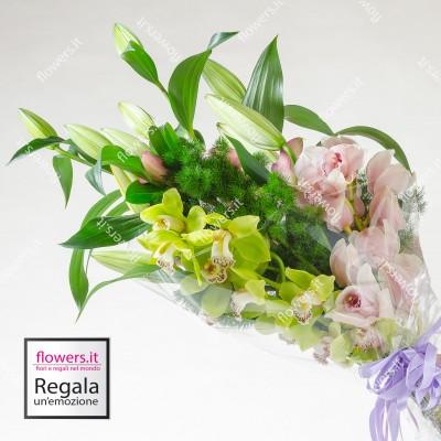 CANDORE - Lilium e orchidee...