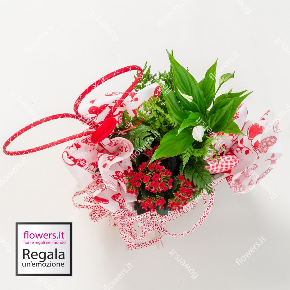 Spedire Fiori Nel Mondo.Flowers It Consegna Fiori A Domicilio A Partire Da 25